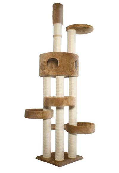 kattens-no-1-vilbert