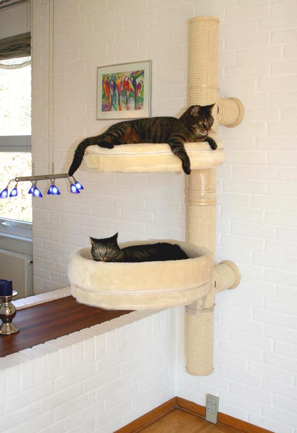 klostrad-katten-no1